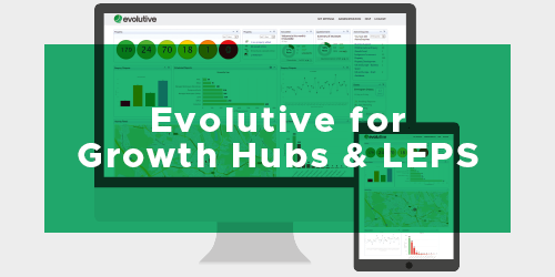 Evolutive for Growth  Hubs & LEPS